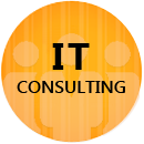 Citrus Informatics IT Consulting